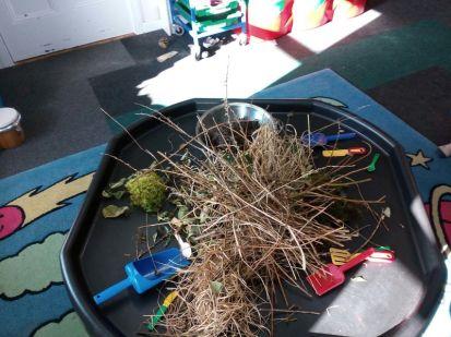 nest building materials